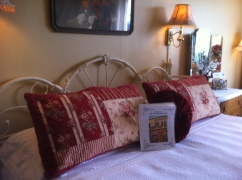 Our room at the Old Wheeler Hotel.