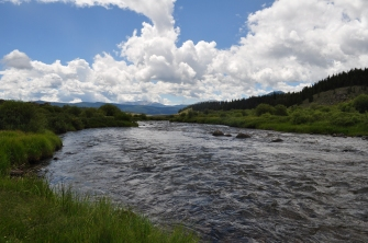 The Taylor River