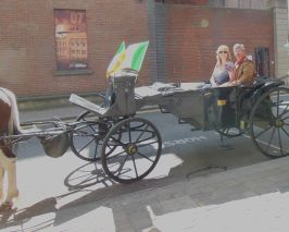 A carriage ride helps if you're lost.