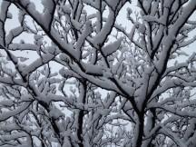 Snowy Glenwood Springs