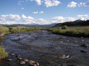 Taylor River