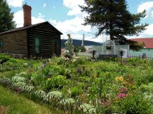Healy House Gardens with Dexter Cabin in Leadville