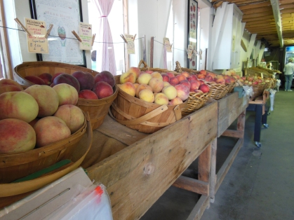 Williamson Orchard and Vineyards in Caldwell, Idaho