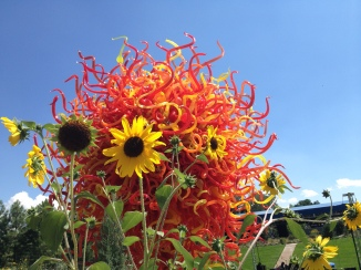 Chihuly exhibit at Denver Botanic