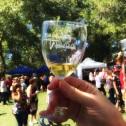 Palisade Wine Fest